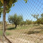 Orchard-fence-protected-by-Leopard