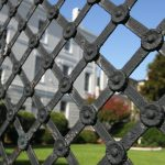 vip-residence-fence-surveilled-by-leopard